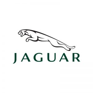 Jaguar Shaped Number Plates
